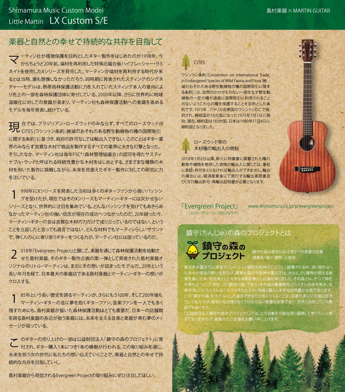 楽器と自然との共存 Shimamura M...